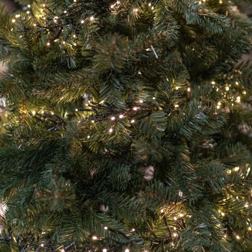 Clusterverlichting kerstboom water